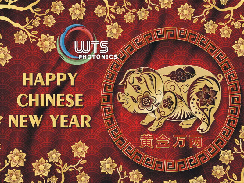 Happy Chinese 2019 Pig New Year
